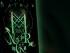 Neil Gaiman Mitologia Nordycka Czaczytać